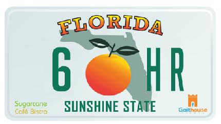 The Sugarcane Cafe Bistro Florida 12 Hour Challenge - The Sugarcane Cafe Bistro, Florida 12 Hour Challenge  - 6 Hour - Affiliated Runner