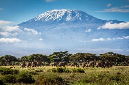 Overseas challenge - Overseas challenge - Kilimanjaro
