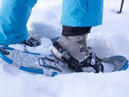 Overseas challenge - Overseas challenge - Finland - Snowshoe Challenge