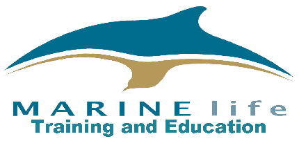Identification of whales, dolphins and seabirds - Identification of whales, dolphins and seabirds - Public entry
